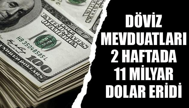 Döviz mevduatları 2 haftada 11 milyar dolar eridi