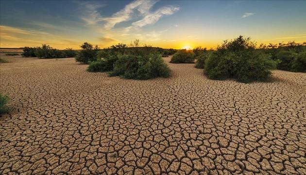 İklim değişikliği Kovid 19 salgınında anahtar rol oynadı
