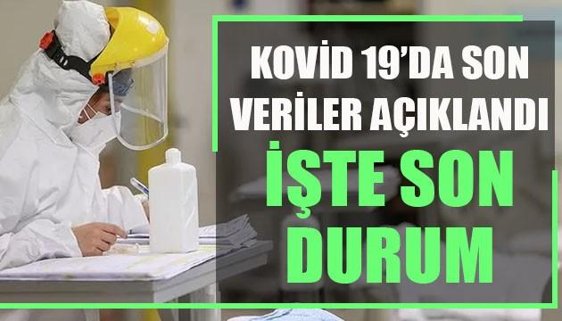 Sağlık Bakanlığı, Kovid 19'da son verileri açıkladı: İşte son durum